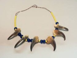 Bear Claw Necklace, 1880-1920, Sioux. Made of bear claws and yellow and blue glass beads.